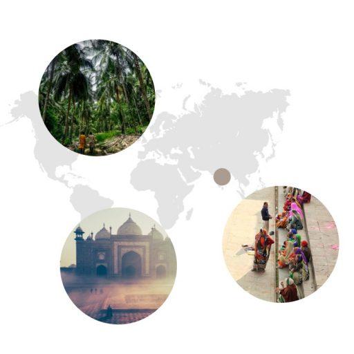 Ursprungsgebiet von Ingwer auf der Weltkarte: Südchina