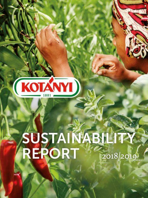 Sustainability Report Image