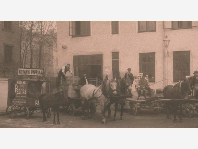 Fotografie alb-negru: Livrare de boia de ardei dulce în trăsură trasă de cai în 1881